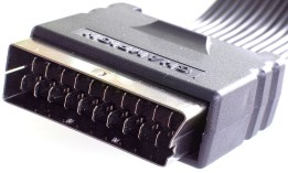Male SCART Connector at the end of a ribbon cable