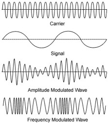Modulated FM and AM signals along with the carrier signal